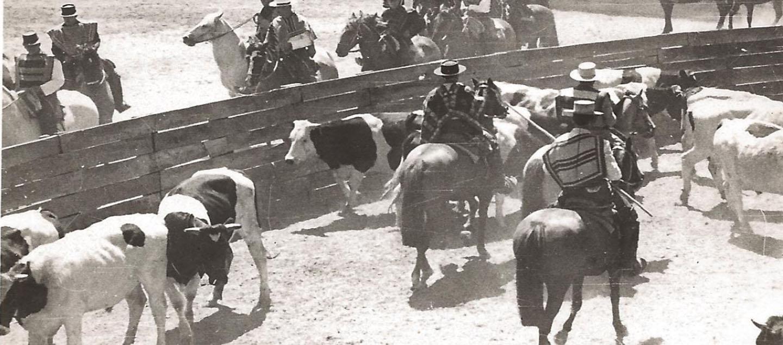 Se cumplen 156 años del deporte del Rodeo Chileno