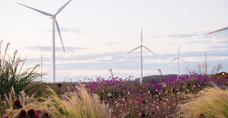 Generadoras convencionales abogan por que flexibilidad del sistema la paguen renovables
